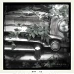 tracibunkers-com_viny_packard